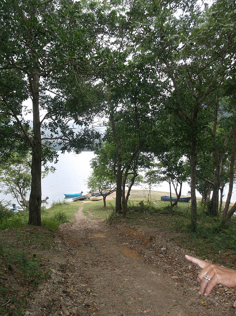 Sentier vers les barques du réservoir.