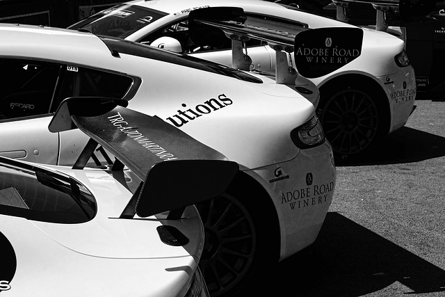 Le Mans 24 Hours Race June 2015 20 X-T1 mono