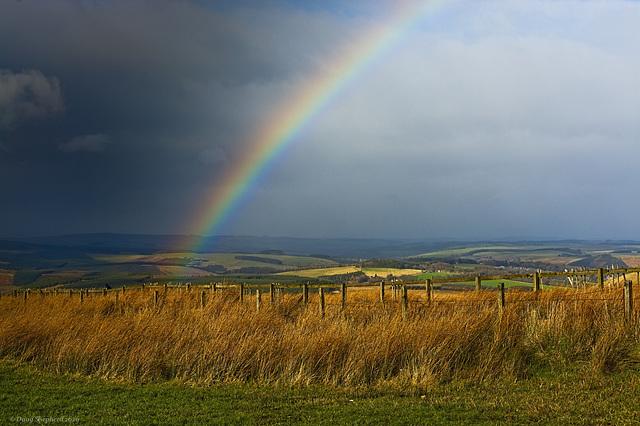 Border Rainbow (HFF Everyone)
