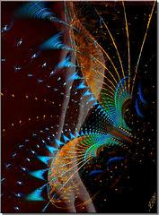 Caresses fractales