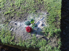 In memory?