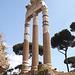 Columns of the Temple of Venus Genetrix in the Forum of Julius Caesar in Rome, July 2012
