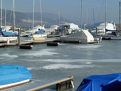 Eiseskälte am Bielersee in Erlach