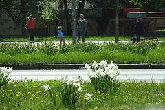 springtime in munich