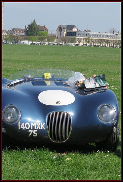 Jaguar type C années 1950