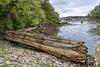 Hooe Lake - wreck beach
