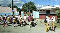 Bus Stop in Cienfuegos/Cuba