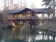 pont couvert au parc