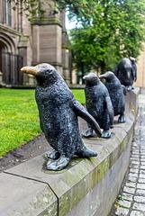 Penguin Parade, Nethergate, Dundee