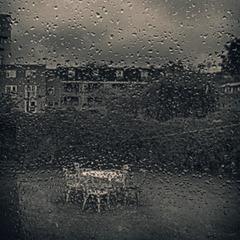grey day