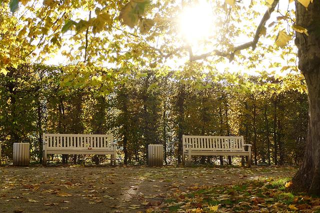 Dresden - Schlosspark Pillnitz
