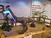 DSCN2837 - Gallimimus bullatos, Ornithomimidae Theropoda