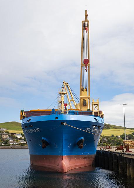 'Zea Servant', Campbeltown Harbour