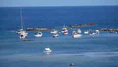 CANNES: Visite de l'ile Saint Honorat 80