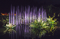 Pond spires illuminated