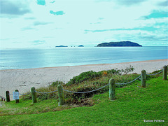 Overlooking Tairua Beach