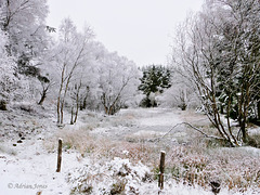 Snow at The Bog, Shropshire