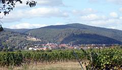 Wachenheim/Dt. Weinstraße und Pfälzerwald