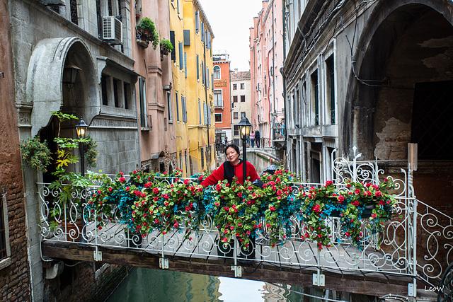 Venezia +++ red flowers
