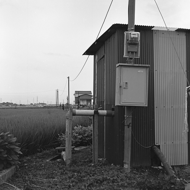 Pump hut by the paddy