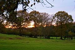 Sunset near Verwood