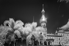 University of Tampa Infrared 002