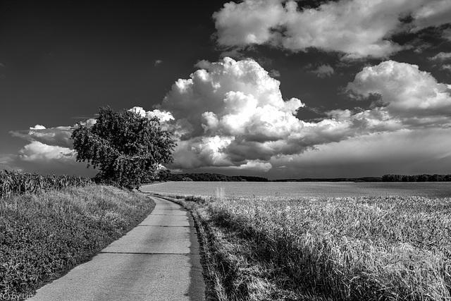 Fat Cloud - Dicke Wolke II (150°)