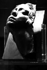La testa della donna ...