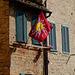 Tuscany 2015 Siena 8  XPro1
