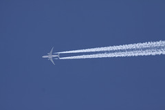Qatar Cargo Boeing 777-FDZ