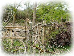wk17-21 3623 Fence Friday