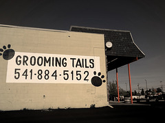 Grooming Tails