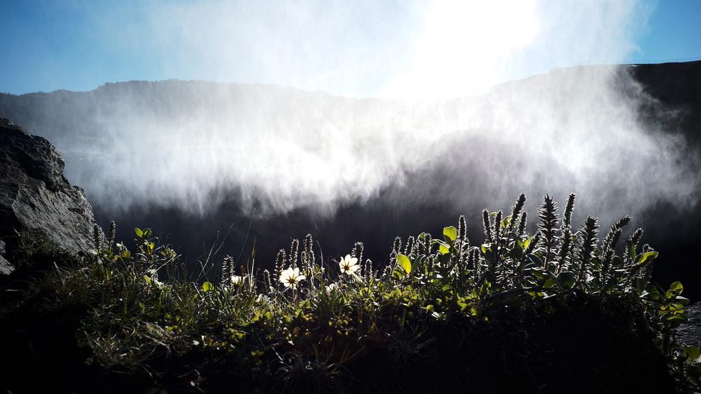 Dettifoss waterfall, Iceland L1004338