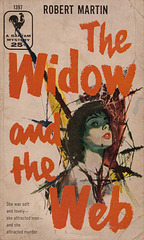 Robert Martin - The Widow and the Web