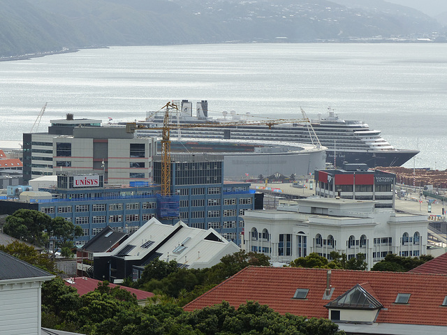 Oosterdam at Wellington (1) - 27 February 2015