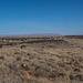 Nalakthu Pueblo4