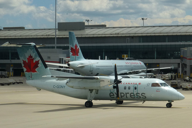C-GONY at Toronto - 20 June 2017