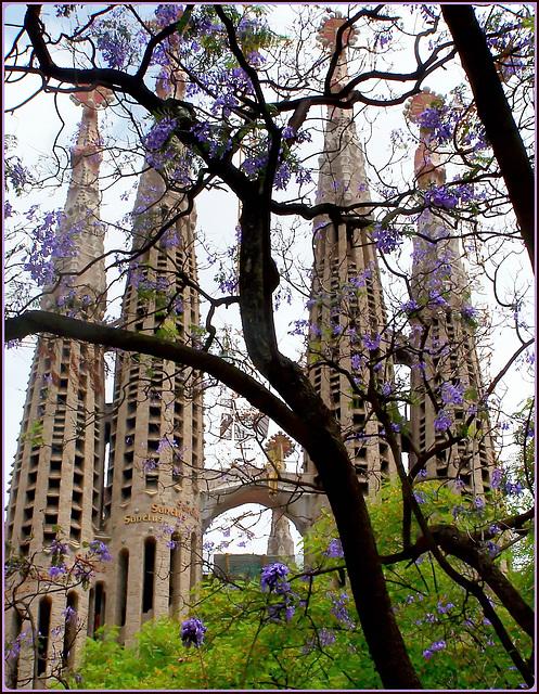 Barcellona : La Sagrada Familia