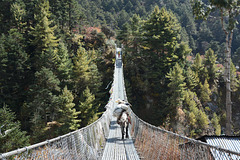 Khumbu, Suspension Bridge on the Way from Tengboche to Namche Bazaar