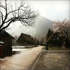Suganuma (菅沼).