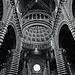 Tuscany 2015 Siena 20 Duomo di Siena XPro1 mono