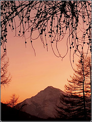SAUZE D'OULX : il monte Chaberton al tramonto