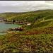 Treen, Gurnard's Head, Zennor, Cornwall for Pam.