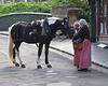 Horse Whispering #4
