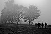 Wanderer im Herbstnebel - Hikers in autumn fog