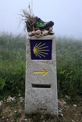 Sur le chemin, en Galice (Chemin de Saint-Jacques-de-Compostelle, de Vézelay à Santiago)