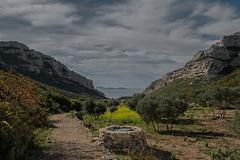 Le vallon des oliviers...................................... ce matin.