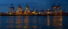 Abendblick über die Elbe