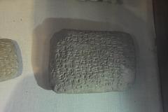 DSC 0902