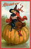 Halloween—Witch with a Black Cat on a Pumpkin